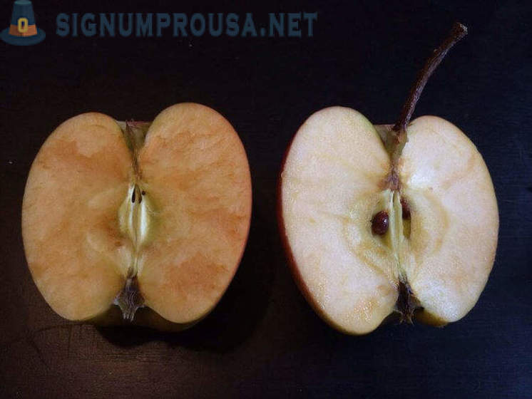 Why do apples turn brown in reality?