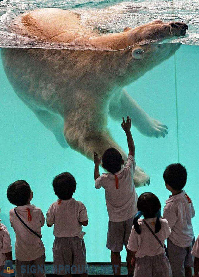 The best zoos in the world