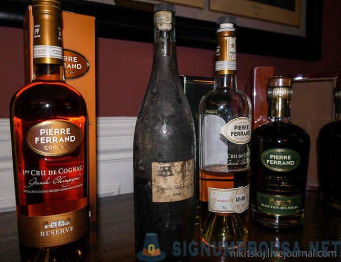 How to enjoy cognac?