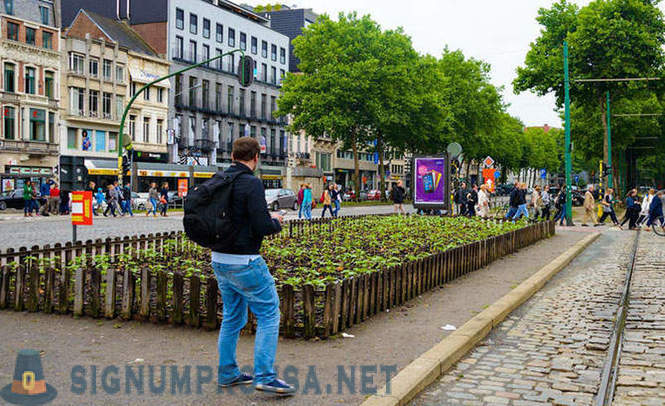 Walk through Antwerp