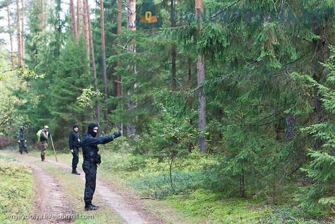 How to look for people in the forest